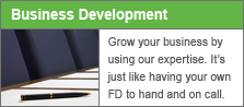 Business development consultants